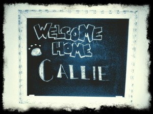 Welcome Home Callie
